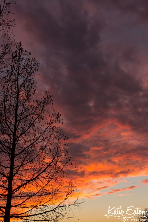 Beautiful image of a sunset in Austin by Katie Eaton Photography-1