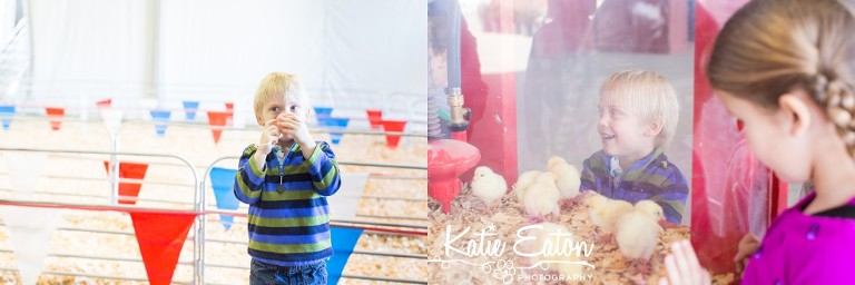 Fun images from the Austin Rodeo and Pig Races | Austin Child Photographer | Katie Eaton Photography-1