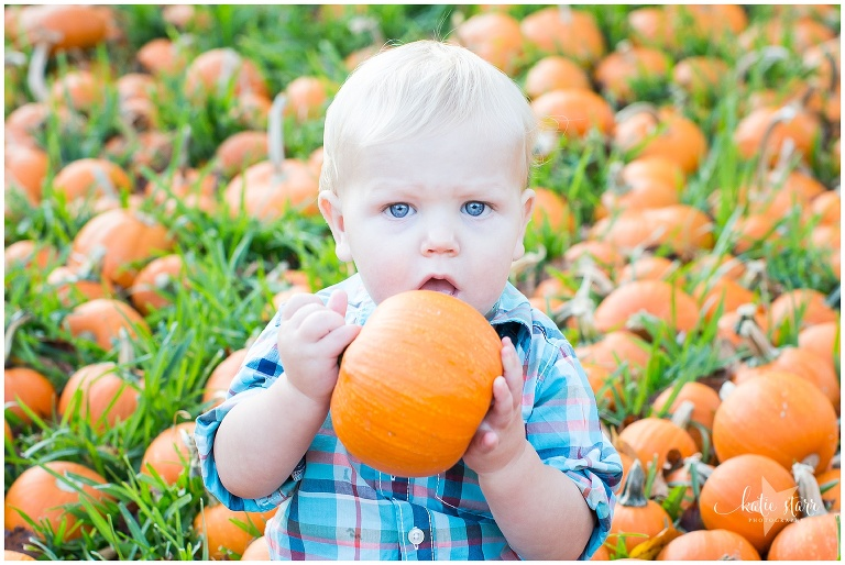 Beautiful images of children in the pumpkin patch in Austin, Texas | Austin Family Photographer | Katie Starr Photography-9.jpg
